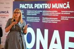 conferinta-pactul-ptr-munca-timisoara-076